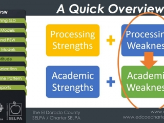 Patterns of Strengths and Weaknesses
