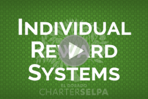 Link to SBIS: Individual Reward Systems webmodule