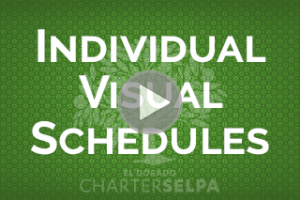 Link to SBIS: Individual Visual Schedules wobmodule