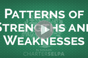 Link to Patterns of Strengths and Weaknesses webmodule