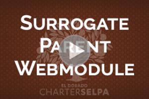 Image for Surrogate Parent Webmodule