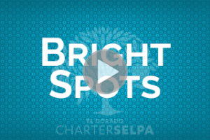Thumbnail for Bright Spots in Education link