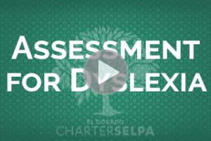 Webmodule for Assessment for Dyslexia