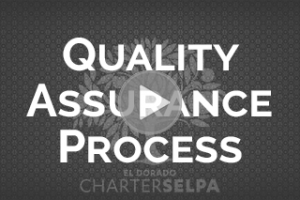 Link for Quality Assurance Process Series