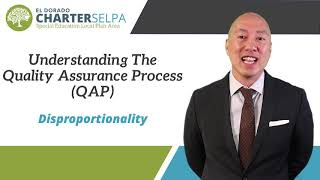 Link for Understanding the Quality Assurance Process (QAP): Disproportionality